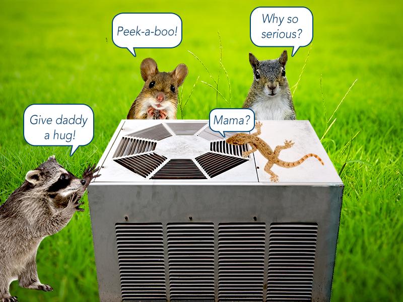 pests air conditioner