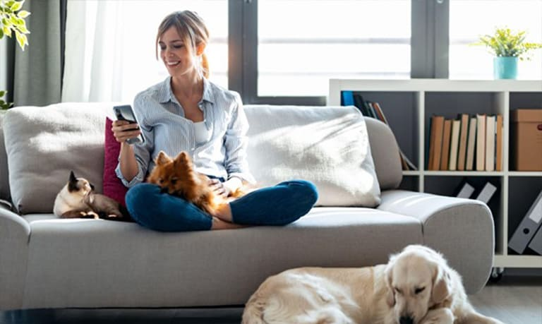 Practical HVAC Maintenance Tips for Pet Owners